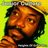 Download Junior Culture - Some Want To See You Rise [Heights Of Great Man 2014] Mp3