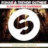 R3hab, Trevor Guthrie Feat Selena Gomez - Slow Down The Soundwave ( Steed Watt Mashup )