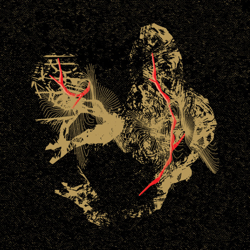 01 Imre Kiss - Untitled (XLB)