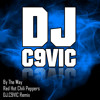 Red Hot Chilli Peppers - By The Way (DJ.C9VIC Remix)