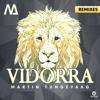 Martin Tungevaag - Vidorra (Asino Remix)
