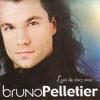 Comedie Musicale Notre Dame De Paris Le Temps Des Cathedrales Bruno Pelletier