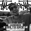 Download IAMNOBODI - When You Know It (Hi-One Remix)  (ft. Katt Williams & DMX) Mp3