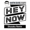 Martin Solveig & Cataracs - Hey Now Feat Kyle  (Shusaku Remix)