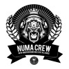 NUMA CREW - CHAINS [LIONDUB FREE DOWNLOAD]