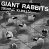 Giant Rabbits - Diju Call (2015)
