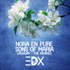 Nora En Pure & Sons Of Maria - Uruguay (EDX's Dubai Skyline Remix)