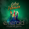 Celtic Woman Dulaman (live)