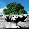 Download Bio-Organic Weapon - Peace Or War Mp3