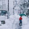 Yuki 雪.