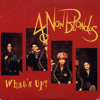 4 Non Blondes - What's up (Allan Guterres Mashup)