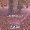 Digital Pilgrimz - Chronicles [Into My Soul] ft. Jinadu (Strong4Life Remix)