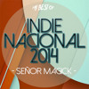 Indie Nacional 2014 (My Best Of)- Free Download & Vj Session Link