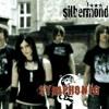 Silbermond - Symphonie short cover by qqbhfi