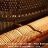 Nick Bergen | Composer Demo (Music Styles: Romantic Piano #1)
