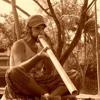 Didgeriblues: Alejandro Mascarell and Roberto Galli