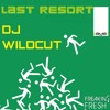 Papa Roach - Last Resort (DJ Wildcut)