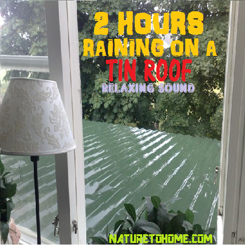 Tin Roof Rain Sounds 2 Hours Of Relaxing Rain Sound By