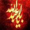 Zuljanah - Mir Hasan Mir - 2015 [HD