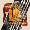 Borgeous vs. DallasK & KSHMR - Burn Toast (W-Mota Mashup)