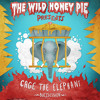 Cage The Elephant - Telescope (Buzzsession)