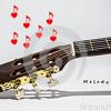 Il Y A Dans Les Paroles De Mes Chansons Des Mots D'amour