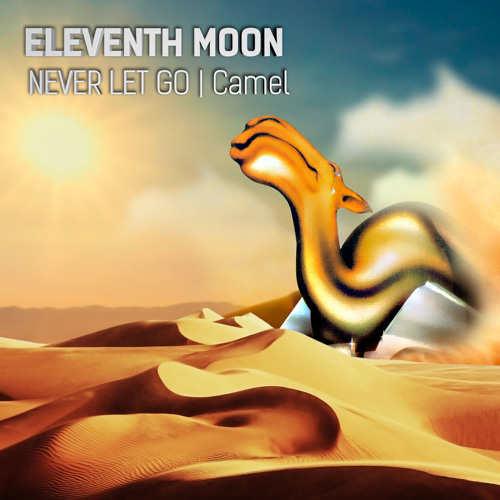 Never Let Go - Camel (cover by eleventh moon)