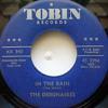 """Dec13 ABC2014 - The Debonaires """"In The Rain"""""""