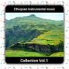 12 - Nebeyu Tesfay - Wede Harar Guzo Clip01