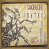 I - Astrocedrumz - Cachuchu Groovy Bytes