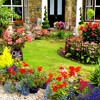 In An English Country Garden By Jon Williams
