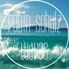 Robin Schulz - Waves (Christian Joseph Cover, Groovementality's KWOALA Remix)