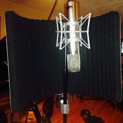 Sound Test - Beesneez CK12 and Heiserman HK12 mic capsules