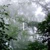 foggy morning. [AxV Episode 01]