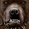 Dj KANI ...Don't FaR$k Wif Me You Dog!!!