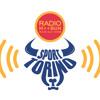 SporTorino Alla Radio - Radiocronaca PMS Manital Torino vs Sigma Basket Barcellona