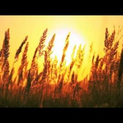 DJ Mindaugelis - Saulele Motule (Best Remix EVER)