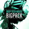 Deep Tech House Bigpack