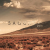 Goldroom - Saguaro Mix 2014