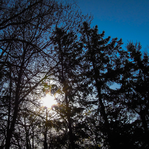 Sunrise - Fiske Lake Trail