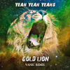 The Yeah Yeah Yeahs - Gold Lion (Vanic Remix)