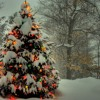 Michael Bublé - White Christmas (Cover Jorik Burema)