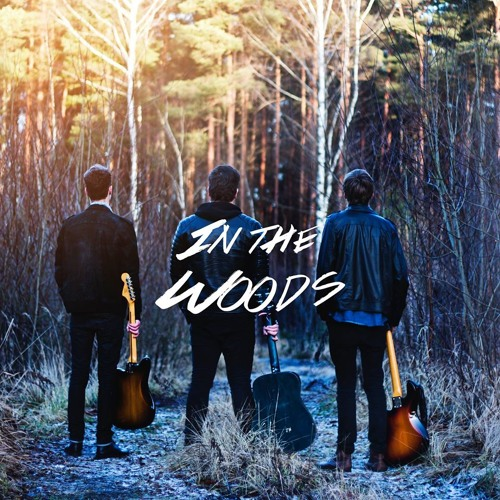 In The Woods EP