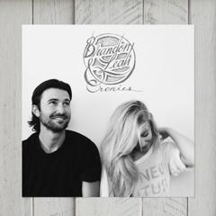 Animal (Mike Snow Cover) // Brandon and Leah