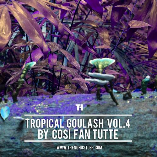Tropical Goulash Vol.4