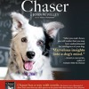 The Dog Show #303 - Chaser: The dog who knows more than 1,000 words