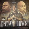 Enemy Down mp3