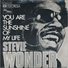Stevie Wonder - You Are The Sunshine Of My Life - Greenkillerz Rebeat