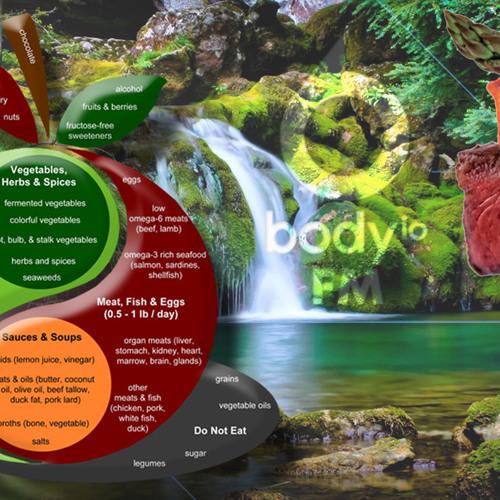 BIOFM 41 - Dr. Paul Jaminet - Perfect Health Diet