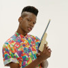 shamir -On The Regular - remix by PG